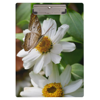 Clipboard/White Peacock Butterfly and Daisies Clipboards