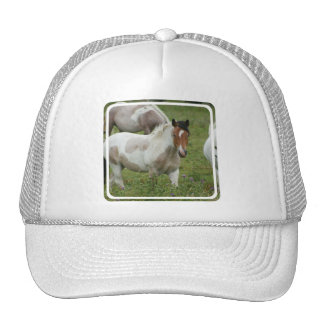 Clipped Paint Horse Baseball Hat