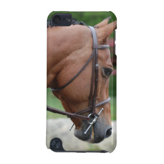 Clipped Pony iTouch Case iPod Touch 5G Cover