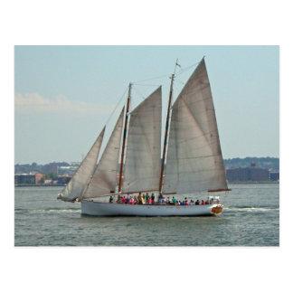 Clipper Ship Postcard