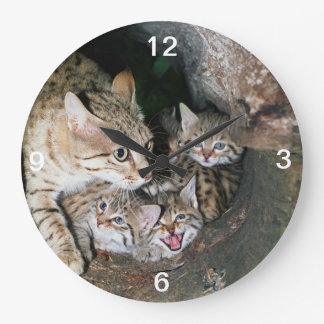 Clock - Asian wildcat