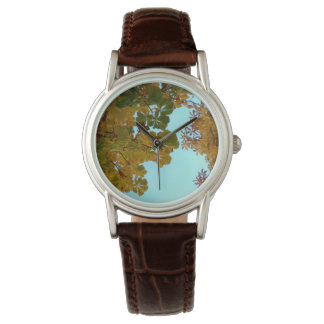 Clock brown leather model Autumn Watch