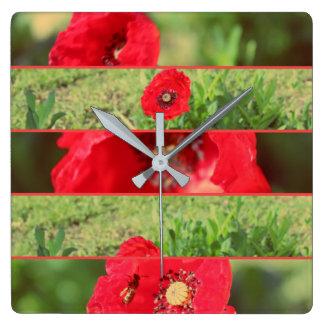 Clock Square Poppy Joining