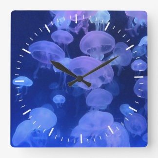 Clock with Jellyfish Photo from Florida Aquarium