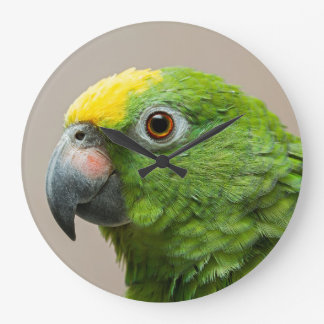 Clock with yellow headed Amazon green parrot