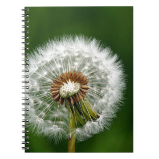 Clocks Notebook