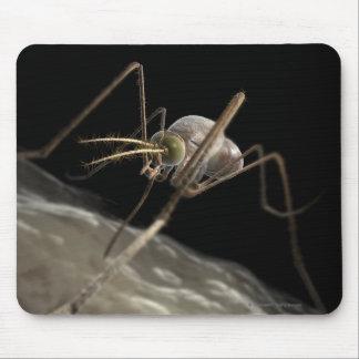 Close up 3d mosquito biting mouse mat