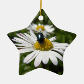 Close-up Beetle sitting on Daisy Photo Christmas Ornament