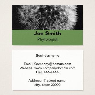Close-up Dandelion Business Card