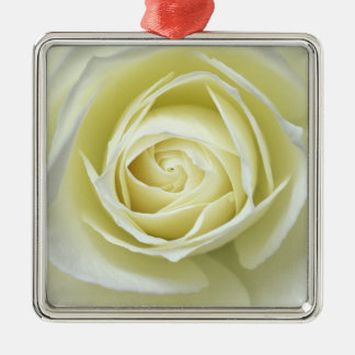 Close up details of white rose christmas ornament