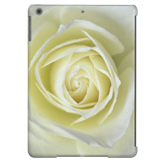 Close up details of white rose iPad air cover