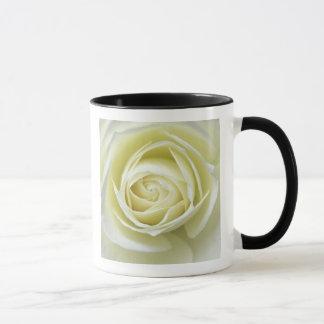 Close up details of white rose mug