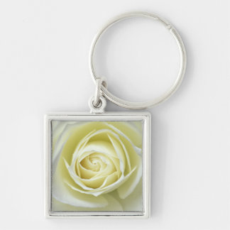 Close up details of white rose Silver-Colored square key ring