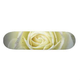 Close up details of white rose skate board decks