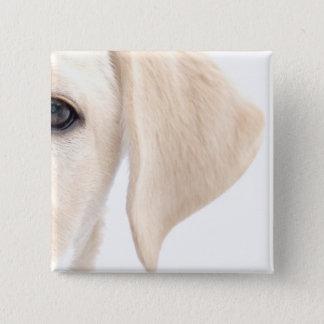 Close-up Half Face of Yellow Labrador 15 Cm Square Badge