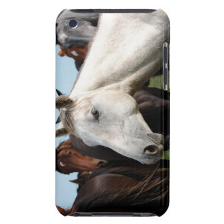 Close-up herd of horses iPod Case-Mate cases