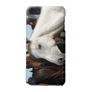 Close-up herd of horses iPod touch 5G cases