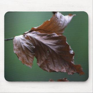 Close-up Leaf Mousepad Nature Lover