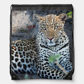 Close up leopard portrait sitting drawstring bag