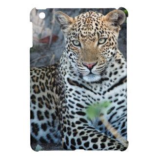 Close up leopard portrait sitting iPad mini cover