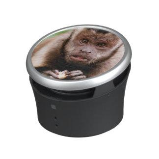 Close-up of a black-capped capuchin monkey bluetooth speaker