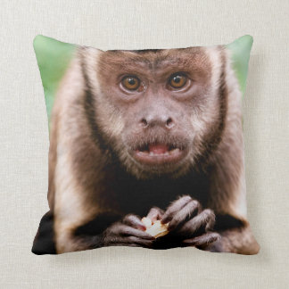 Close-up of a black-capped capuchin monkey cushion