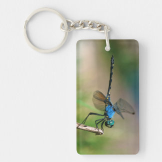 Close-Up Of A Blue Dragon Fly On A Branch Key Ring