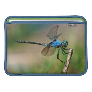 Close-Up Of A Blue Dragon Fly On A Branch Sleeve For MacBook Air