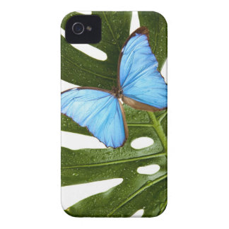 Close up of a Blue Morpho Butterfly on a palm Case-Mate iPhone 4 Case