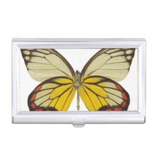 Close-up of a butterfly 3 business card holder
