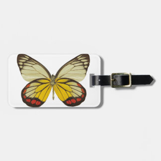 Close-up of a butterfly 3 luggage tag