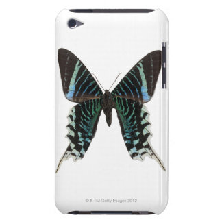 Close-up of a butterfly iPod touch cover