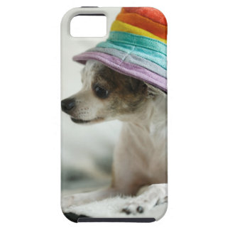 Close-up of a Chihuahua wearing a hat Case For The iPhone 5