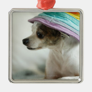 Close-up of a Chihuahua wearing a hat Silver-Colored Square Decoration
