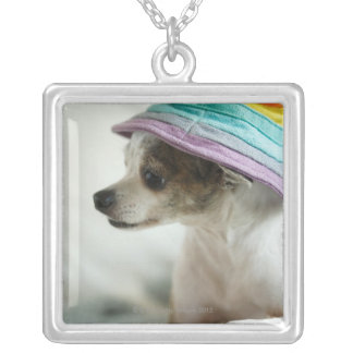 Close-up of a Chihuahua wearing a hat Silver Plated Necklace