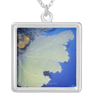 Close-up of a Common Sea Fan Silver Plated Necklace