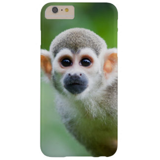 Close-up of a Common Squirrel Monkey Barely There iPhone 6 Plus Case