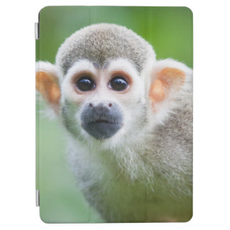 Close-up of a Common Squirrel Monkey iPad Air Cover