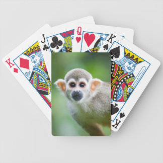 Close-up of a Common Squirrel Monkey Poker Deck