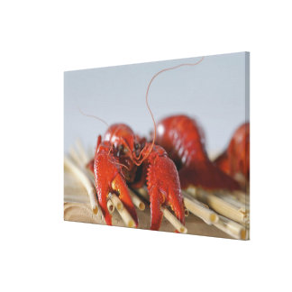 Close-up of a crab on sticks canvas print