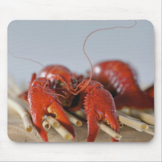 Close-up of a crab on sticks mouse mat