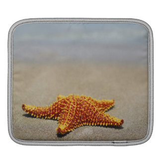 Close-up of a Cushion Starfish iPad Sleeve