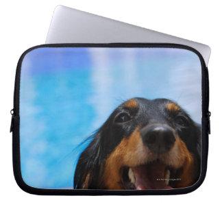 Close-up of a Dachshund dog panting Laptop Sleeve