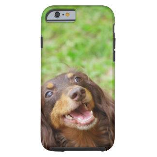 Close-up of a Dachshund dog Tough iPhone 6 Case