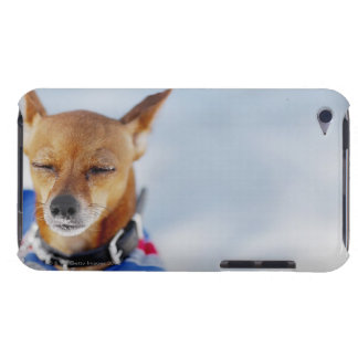 Close-up of a dog barely there iPod case