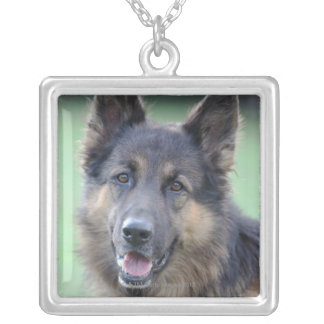 close-up of a dog face silver plated necklace