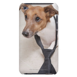 Close-up of a dog putting on a tie barely there iPod cover