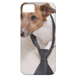Close-up of a dog putting on a tie case for the iPhone 5