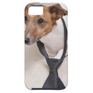 Close-up of a dog putting on a tie iPhone 5 cover