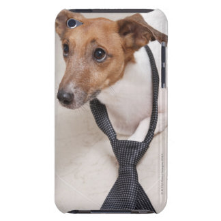 Close-up of a dog putting on a tie iPod touch Case-Mate case